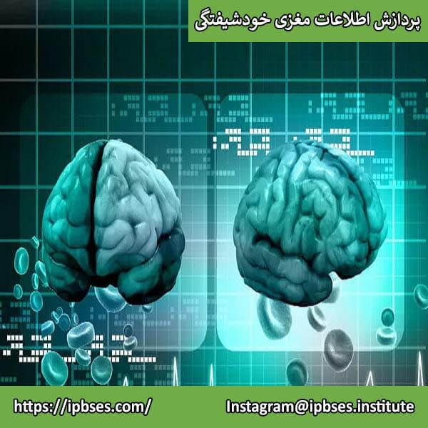 پردازش اطلاعات مغزی خودشیفتگی: عوامل شناختی و روانی